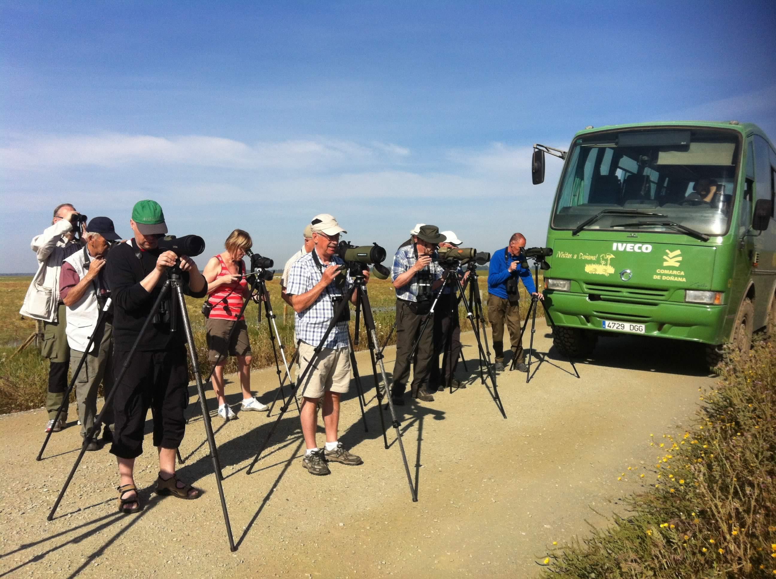 Shared bird tour