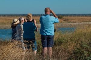 Clientes Discovering Doñana