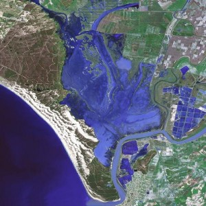 Satellite map of Doñana