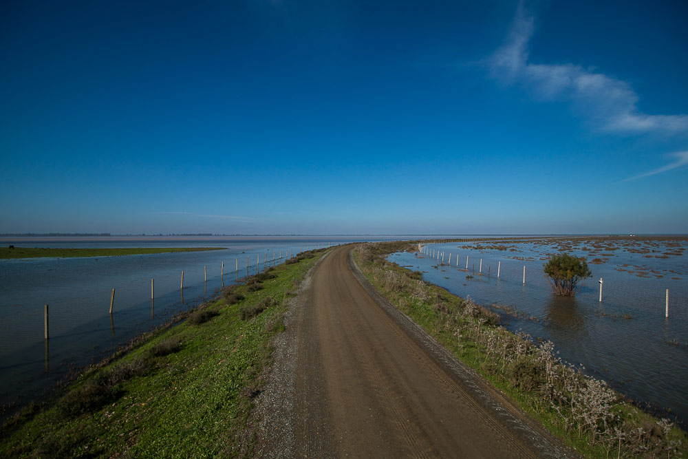 Road going across the flooded marshes
