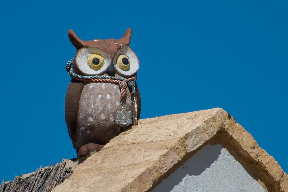 Owl dummy