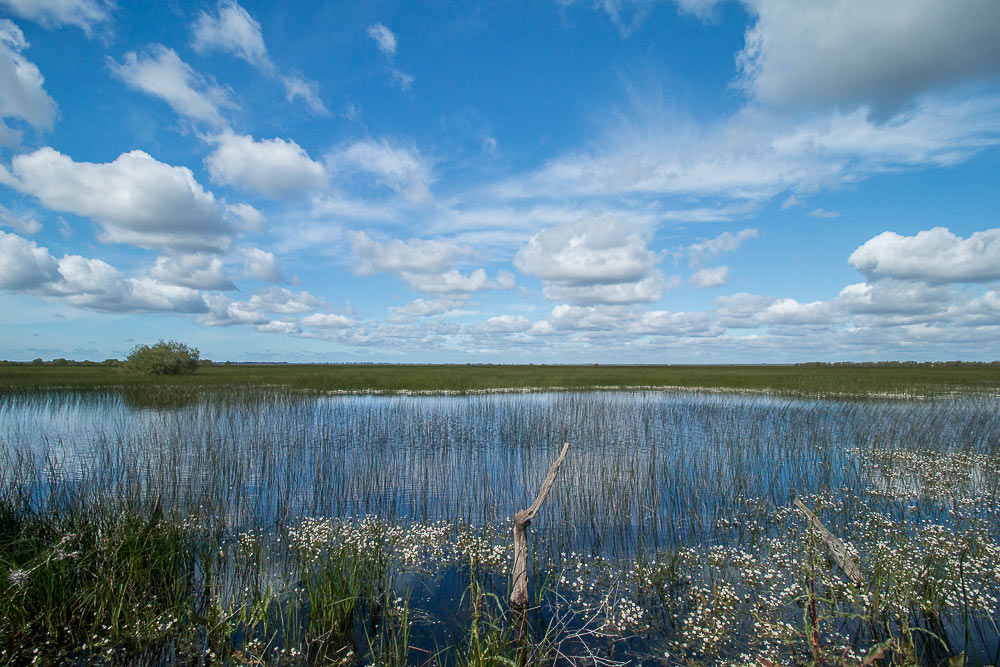 cano-guadiamar-primavera-nubes-cielo