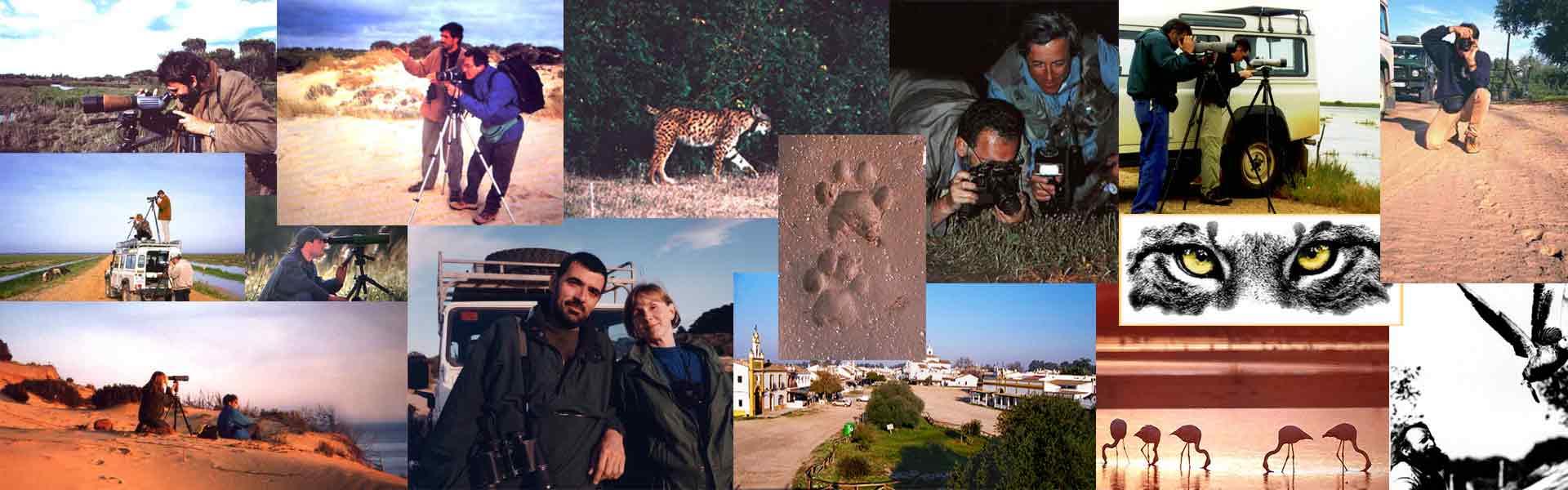 mosaico fotos antiguas