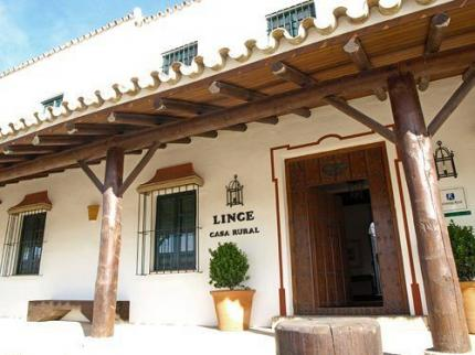 Lince Casa Rural Donana
