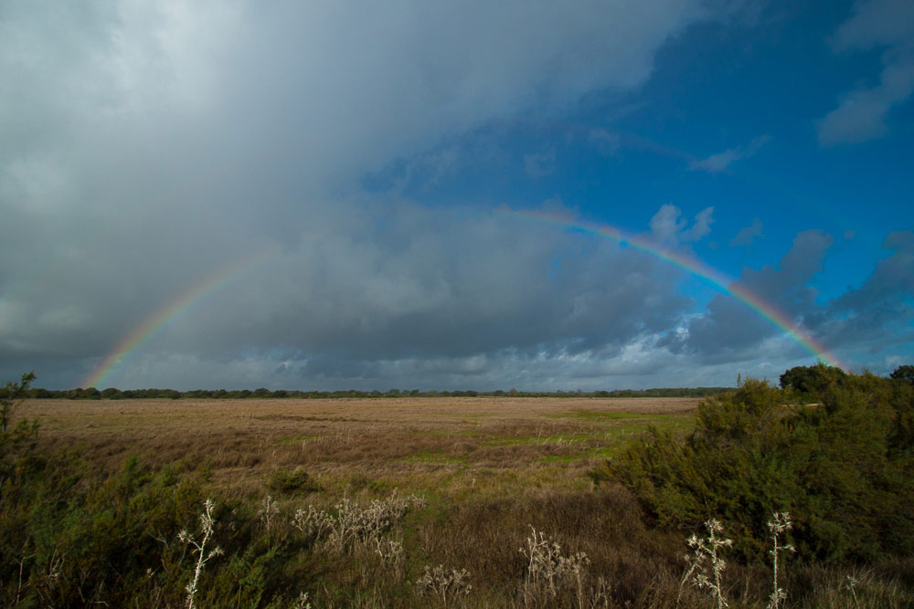 Rainbow over the dry marshes
