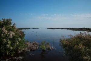 Caño Guadiamar inundado