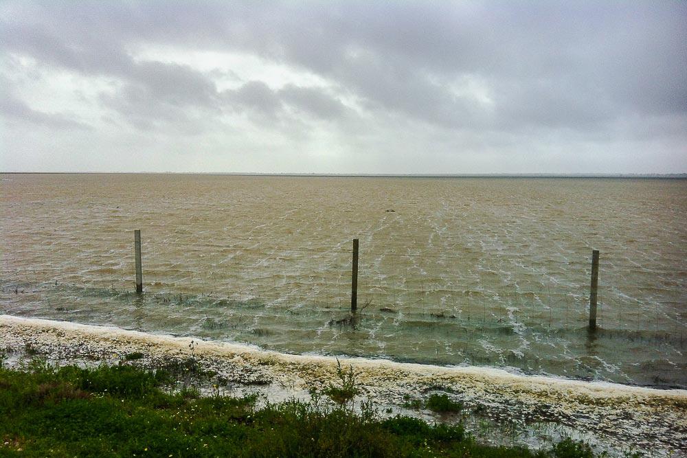 Marismas inundadas en invierno