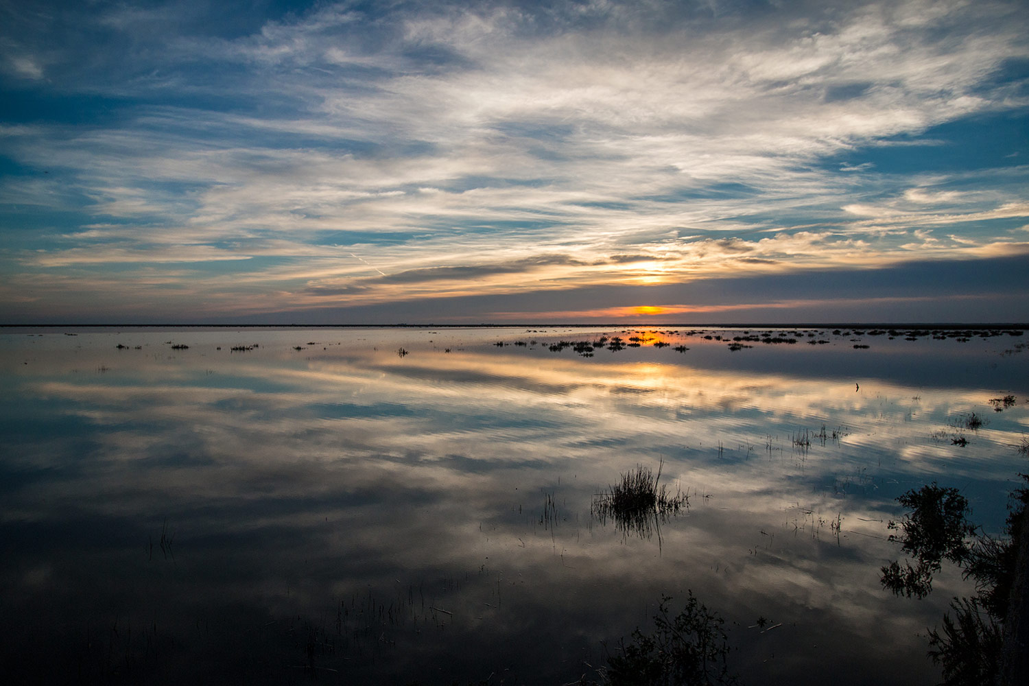 Sunset in the flooded marshes