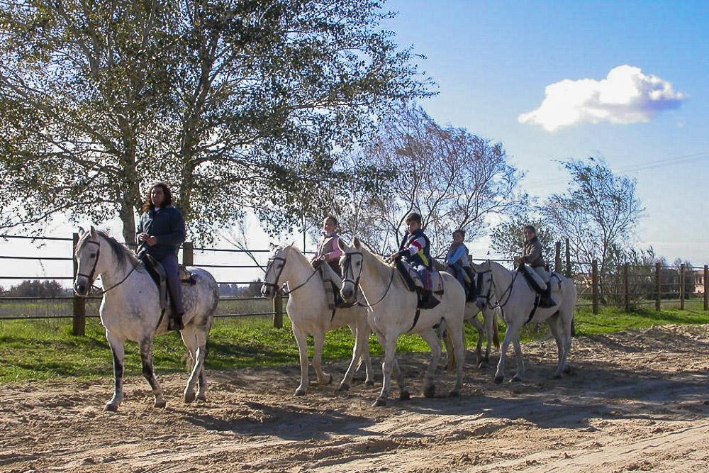 Excursión a caballo