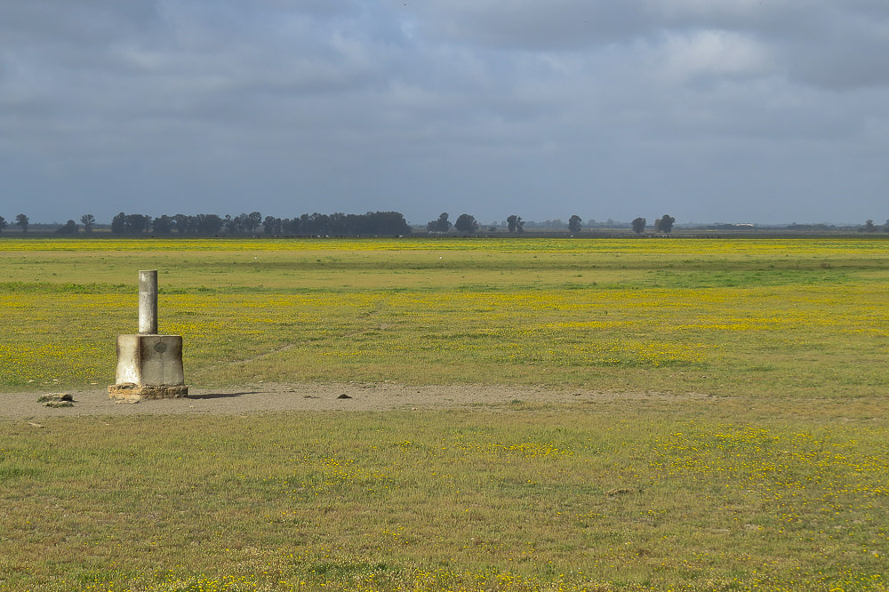 Landscape of the marshes with a trig point
