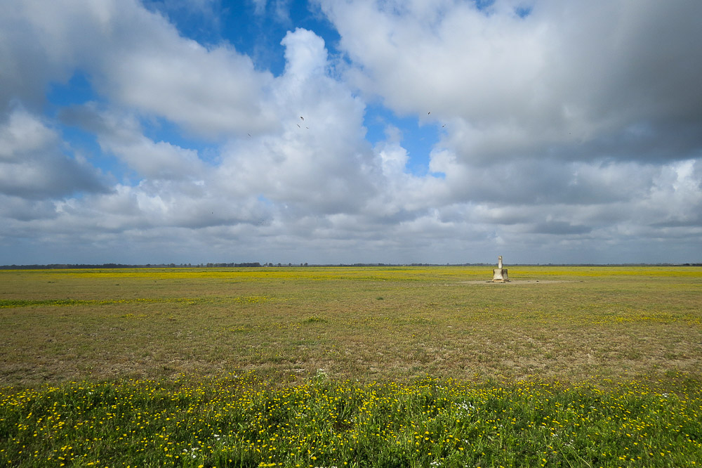 Marsh landscape with partially cloudy blue sky and a trig point