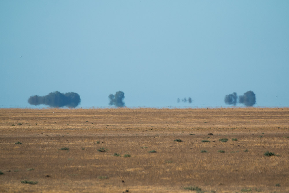Mirage in the marshes